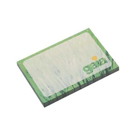 BIC Sticky Note 101 x 75